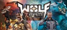 Wolfteam hesabı