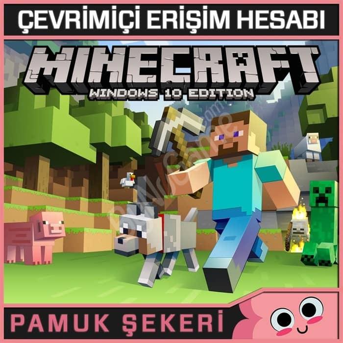 Minecraft Windo...