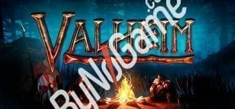valheim steam g...