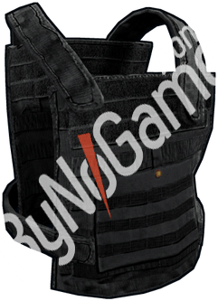 Plate Carrier -...