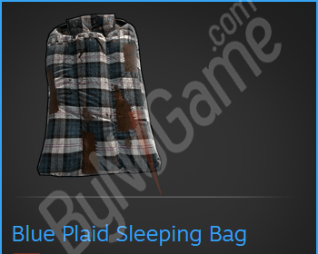 Blue Plaid Slee...