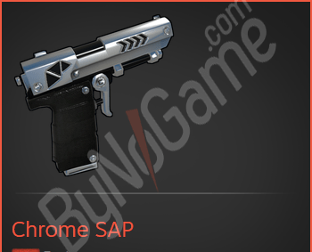 Chrome SAP
