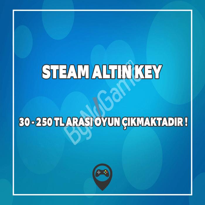 Steam Altın Key