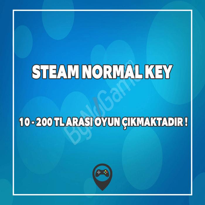 Steam Normal Ke...